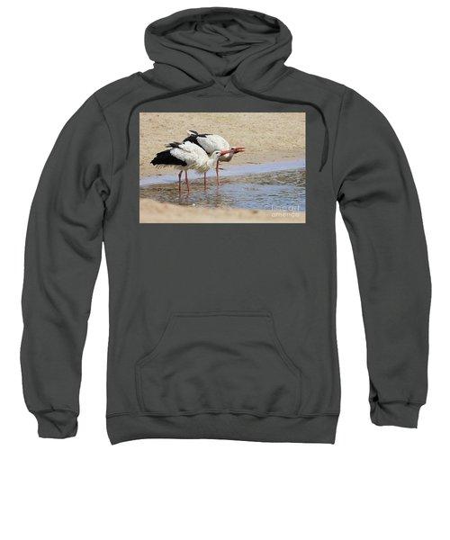 Two Drinking White Storks Sweatshirt