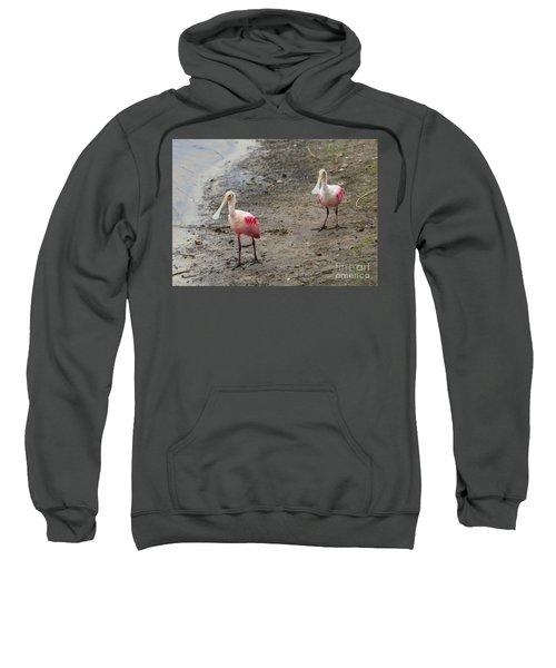Two Roseate Spoonbills 2 Sweatshirt by Carol Groenen