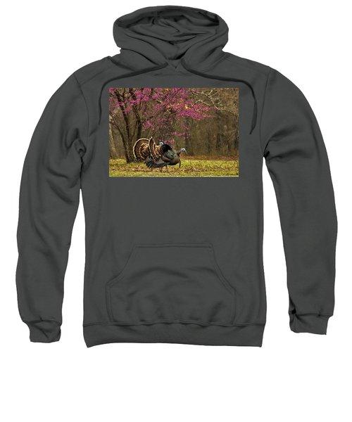 Two Tom Turkey And Redbud Tree Sweatshirt