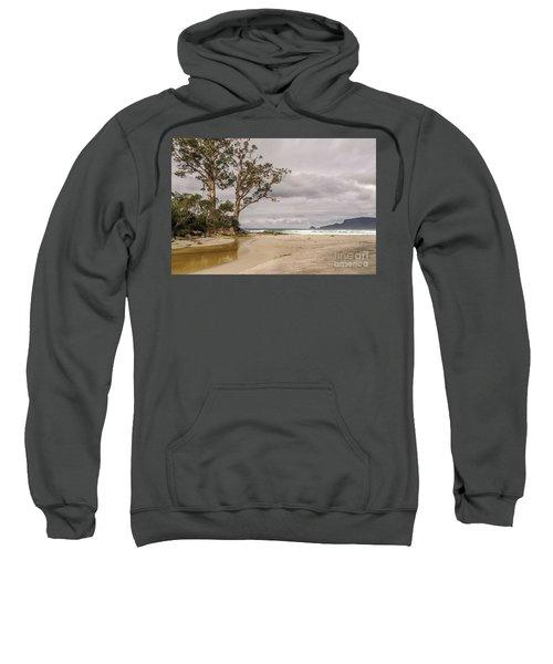 Two Tree Point Sweatshirt