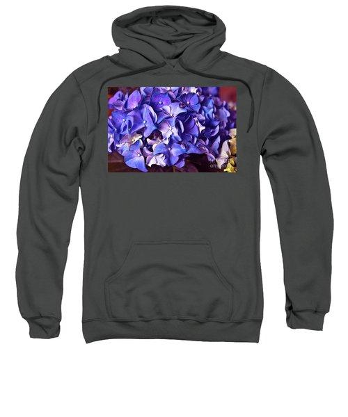 Ultra Violet Dance Sweatshirt