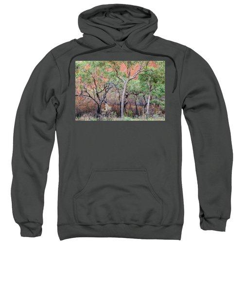 Uluru 05 Sweatshirt