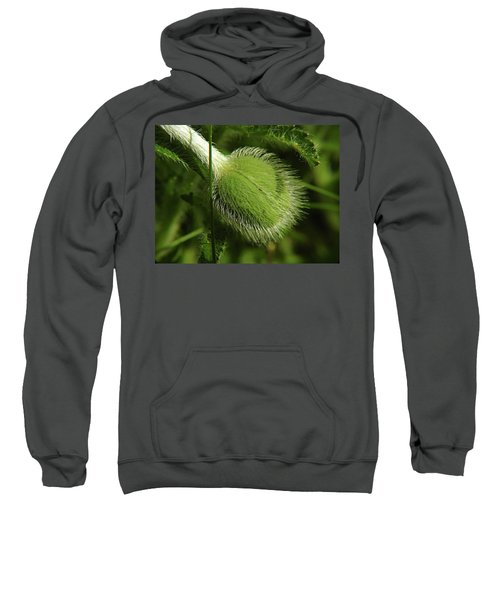 Unborn Poppy Sweatshirt