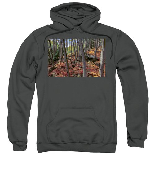 Under The Aspens Sweatshirt