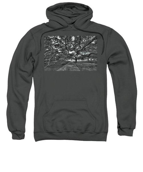 Under The Century Tree - Black And White Sweatshirt