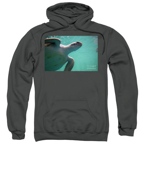 Underwater Race Sweatshirt