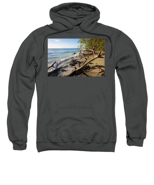 The Unspoiled Beaty Of Barefoot Beach Preserve In Naples, Fl Sweatshirt