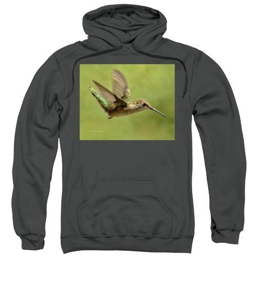 Untitled Hum_bird_one Sweatshirt