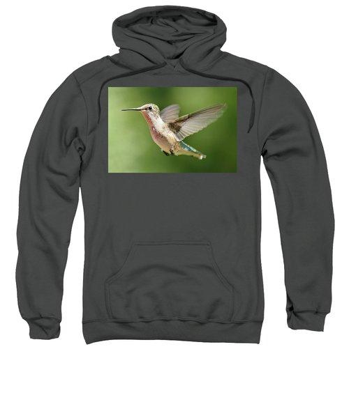 Untitled Hum_bird_two Sweatshirt