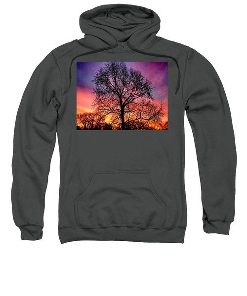 Velvet Mood Sweatshirt