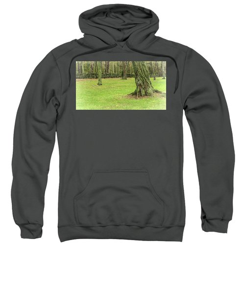 Venerable Trees And A Stone Wall Sweatshirt