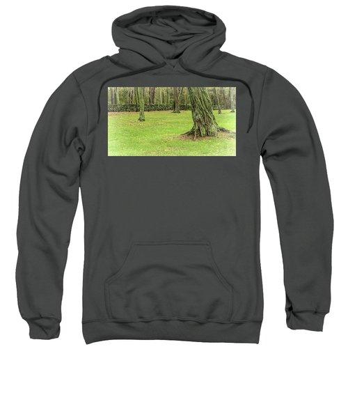 Venerable Trees And A Stone Wall Sweatshirt