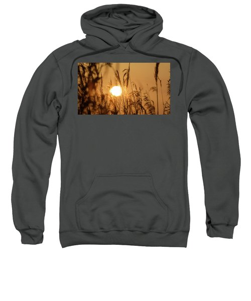 View Of Sun Setting Behind Long Grass B Sweatshirt