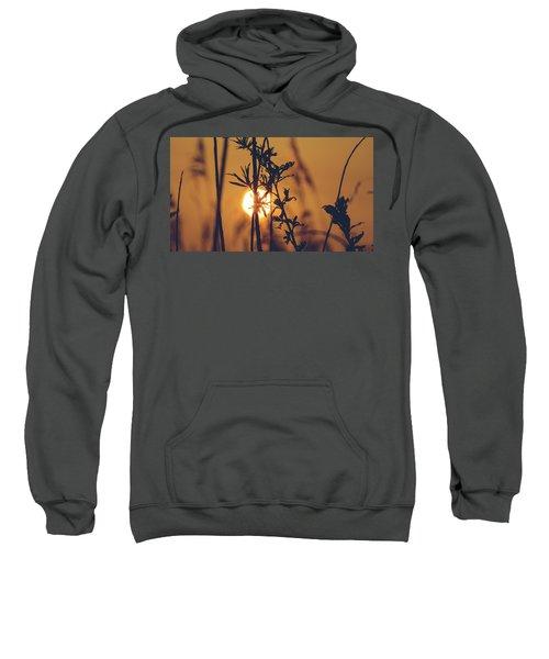 View Of Sun Setting Behind Long Grass D Sweatshirt