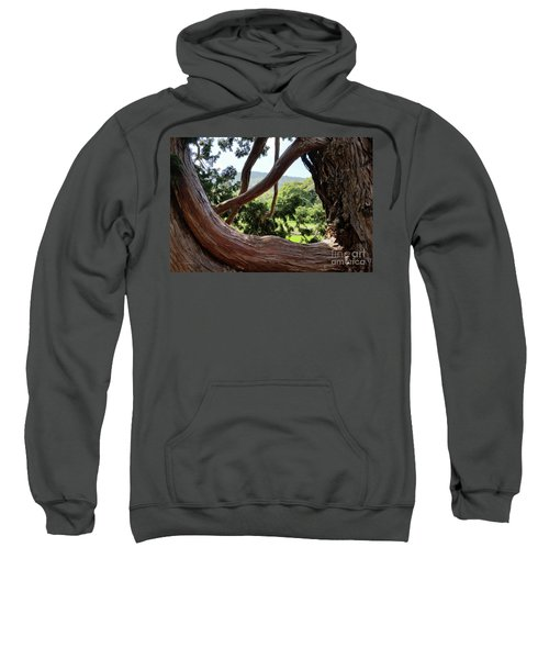 View Through The Tree Sweatshirt