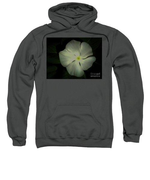 Vinca Bloom Night Glow Sweatshirt