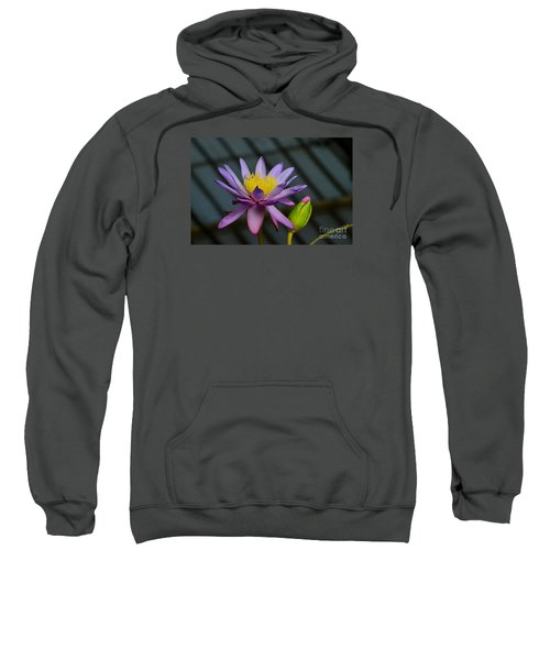 Violet And Yellow Water Lily Flower With Unopened Bud Sweatshirt