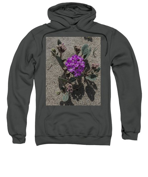 Violets In The Sand Sweatshirt