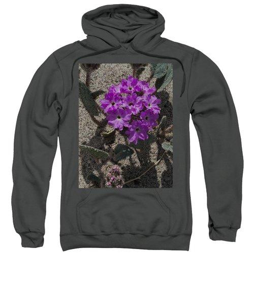 Violets In The Sand Sweatshirt