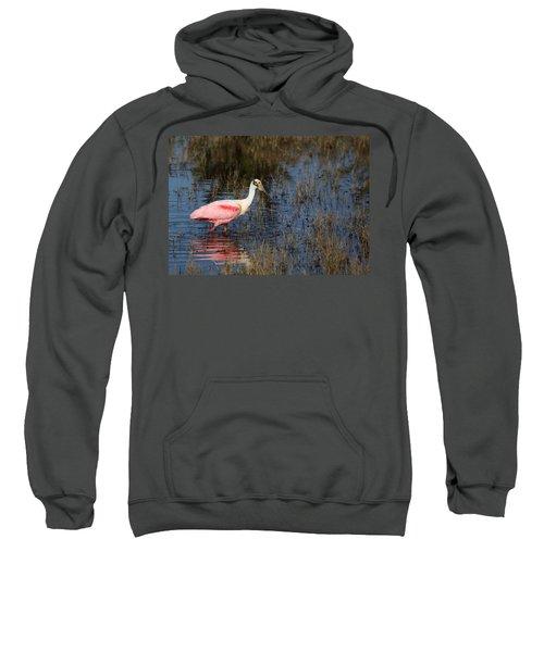 Wading Roseate Spoonbill Sweatshirt