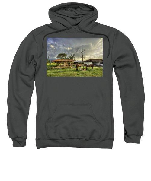 Siesta Sweatshirt