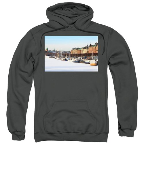 Waiting Out Winter Sweatshirt by David Chandler