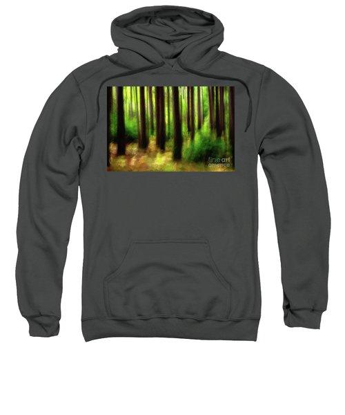 Walking In The Woods Sweatshirt