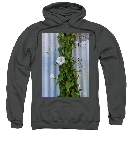 Wall Flower Sweatshirt