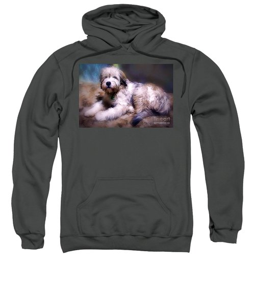 Want A Best Friend Sweatshirt