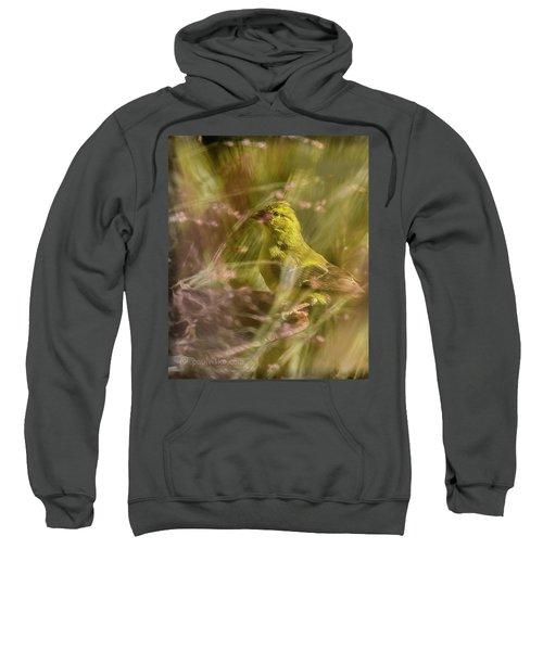 Watch What You Eat.... Sweatshirt