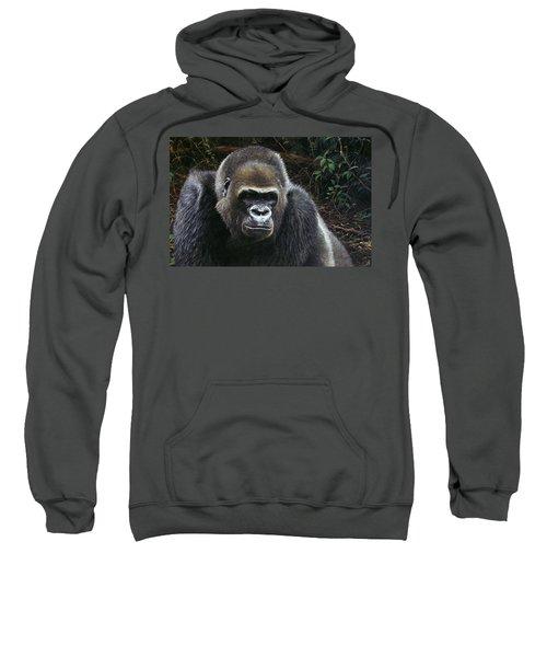 Watchful Domain Sweatshirt