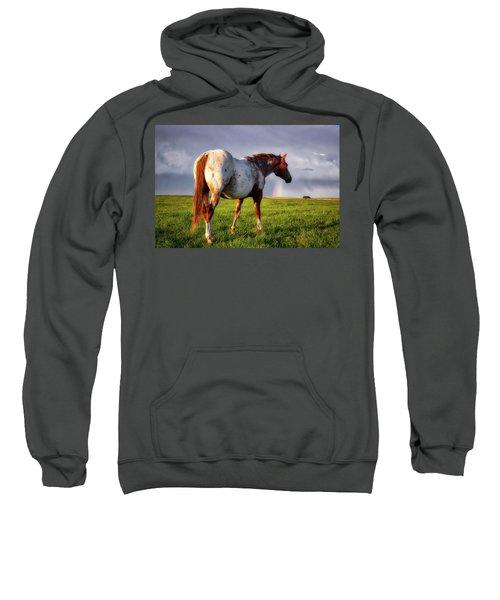 Watching The Rainbow Sweatshirt