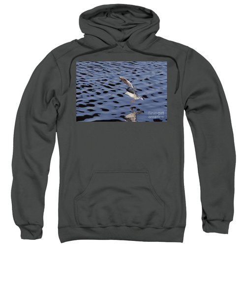 Water Alighting Sweatshirt
