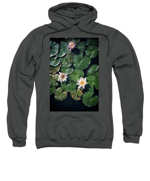 Water Triad Sweatshirt