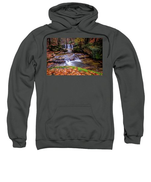Waterfall-2 Sweatshirt