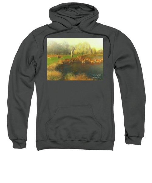 Watering Hole Sweatshirt