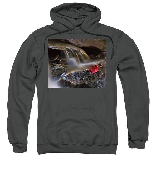 Watermark Sweatshirt