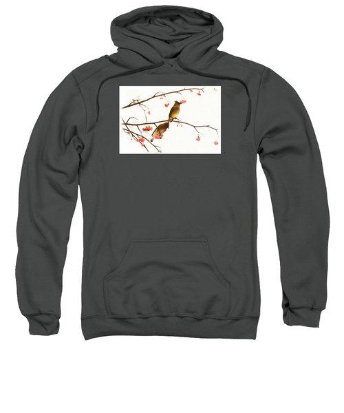 Waxwing Wonders Sweatshirt