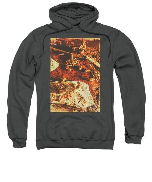 Weathered Scorpion Art Sweatshirt