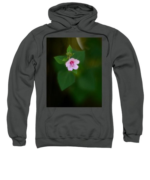 Weed Flower 907 Sweatshirt