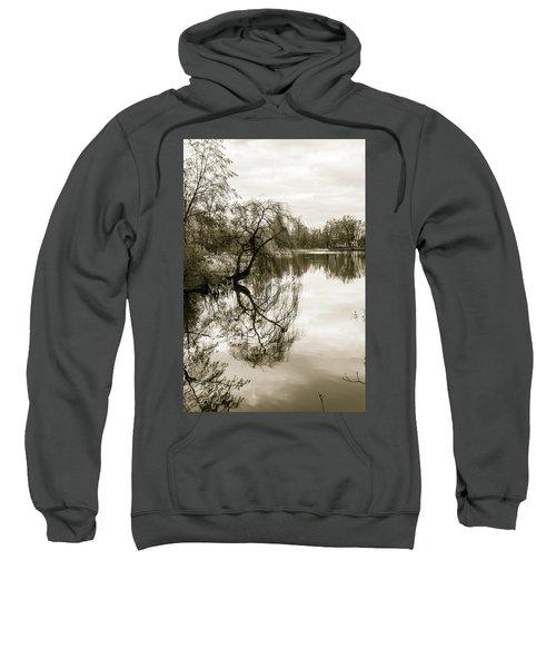Weeping Willow Tree In The Winter Sweatshirt