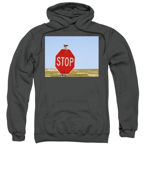 Western Meadowlark Singing On Top Of A Stop Sign Sweatshirt