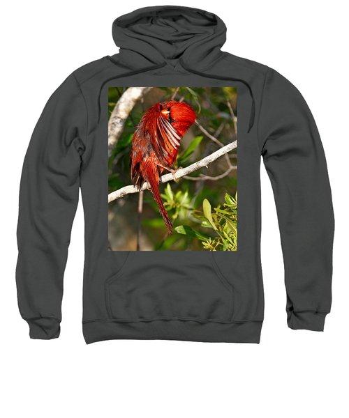 Wet Cardinal Sweatshirt