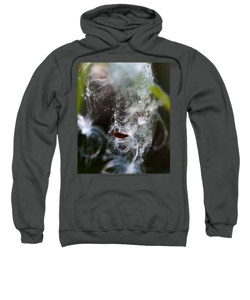 Wet Seed Sweatshirt