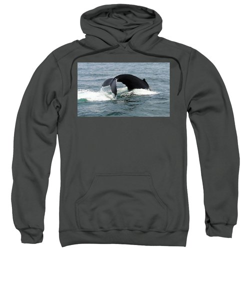 Whale Of A Tail Sweatshirt