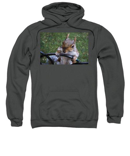 whats Up Sweatshirt