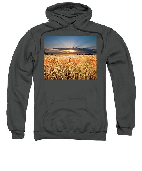 Wheat At Sunset Sweatshirt