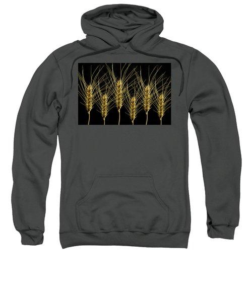 Wheat In A Row Sweatshirt