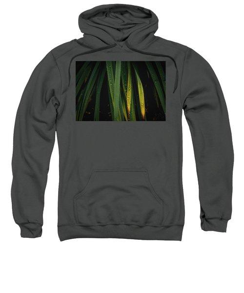 When It Rains Sweatshirt