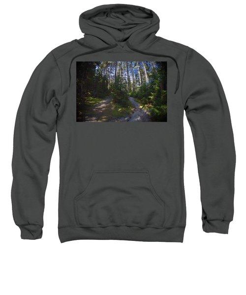 Which Path? Sweatshirt